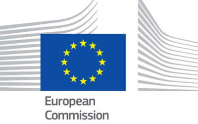 Support to the Energy Union Governance Process